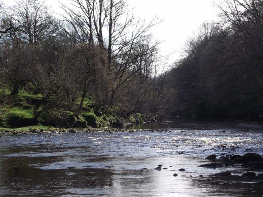 Broomhills Farm River Eco Pods 1