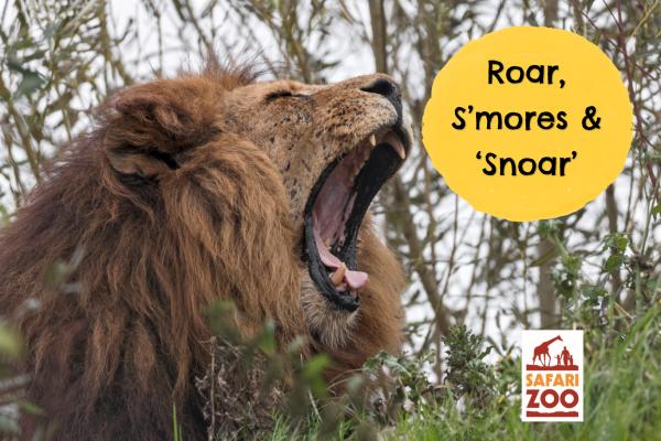 Roar, S'mores and Snoar!