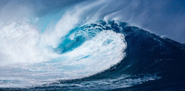 World Oceans Day 2018 16