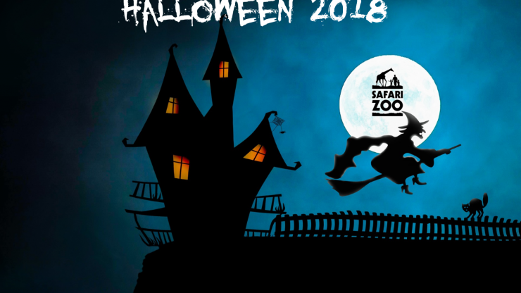 Halloweeeeeeen Spoooktacular at Safari Zoo 2