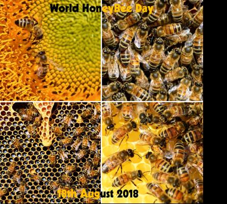 World Honey Bee Day 2