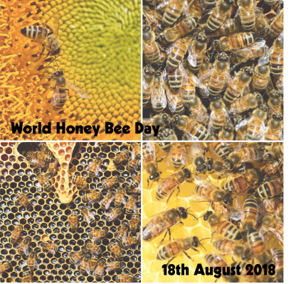 World Honey Bee Day 3