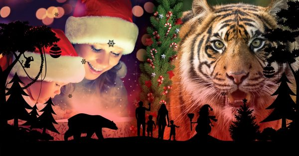 This Christmas! 50% Off Encounters, Annual Passes and Memberships 2