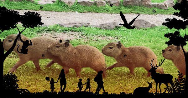 Something for Everyone at Safari Zoo 2