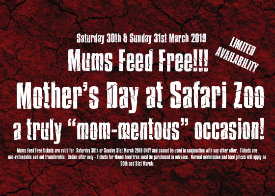 Mums Feed Free this Mother's Day 1